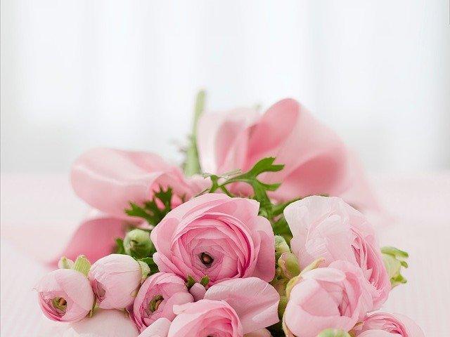 fleurs séchées décoratives